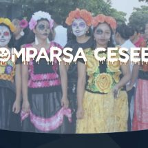 COMPARSA UNIVERSIDAD CESEEO